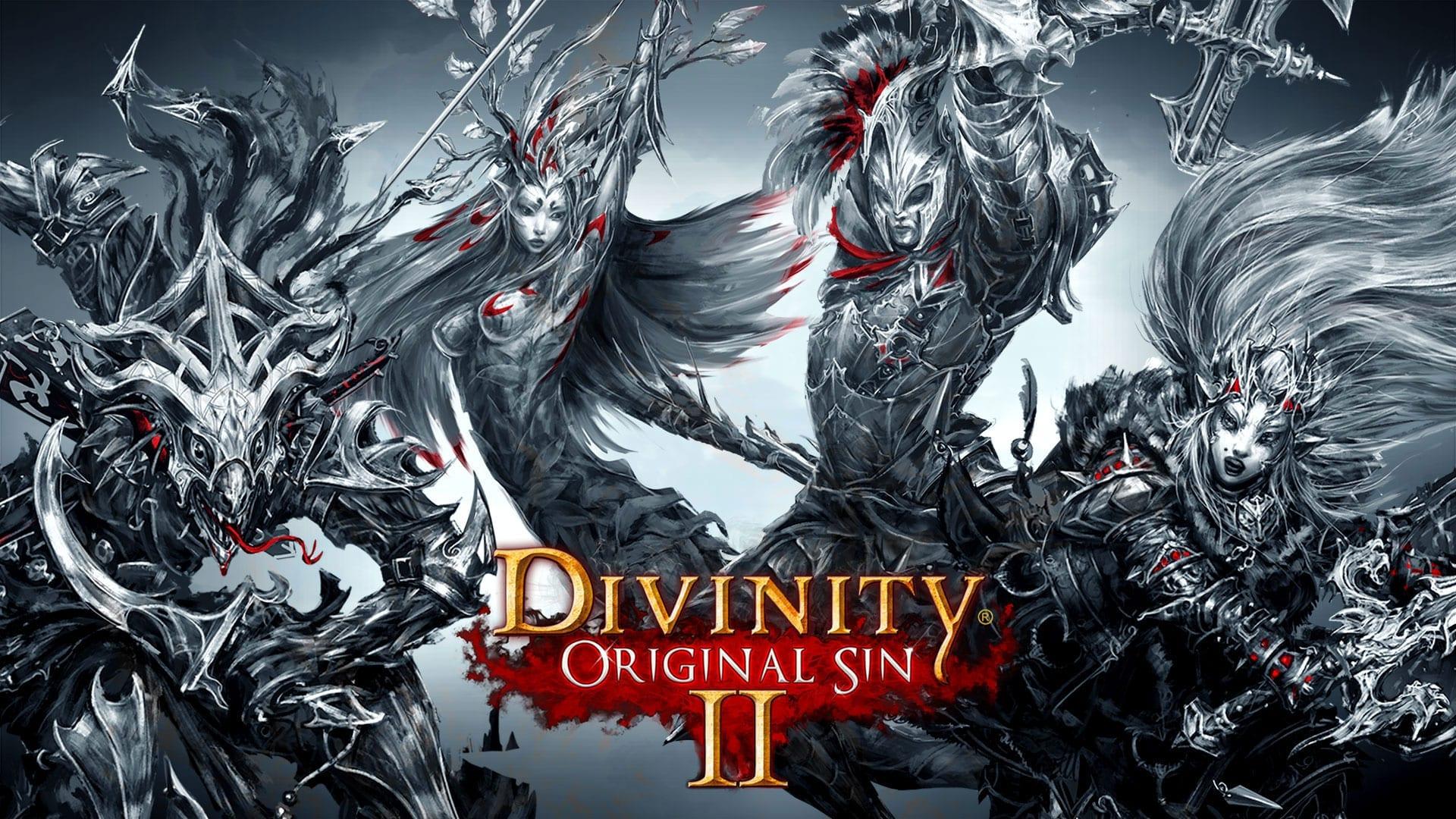Арт к игре Divinity